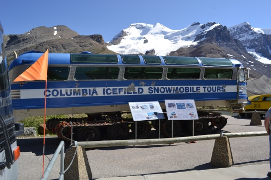 top-things-to-do-in-canada-columbia-icefields