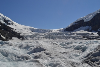 top-things-to-do-in-canada-ice-field