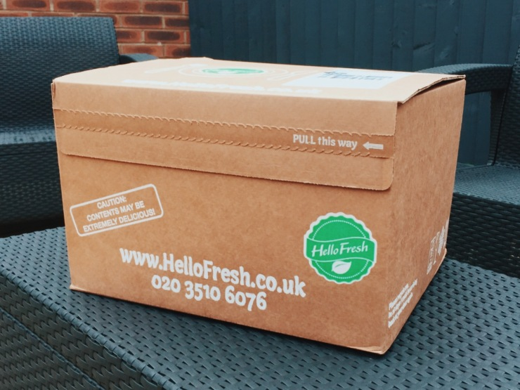HelloFresh Delivery Box Review