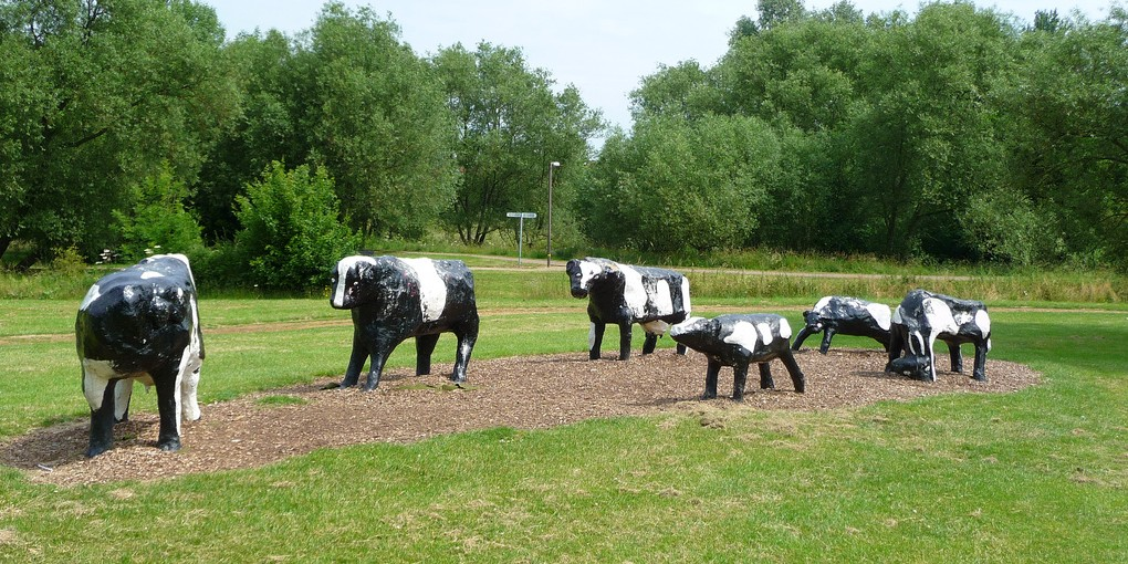Concrete Cows Milton Keynes birthday