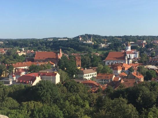 Lithuania_vilnius_view