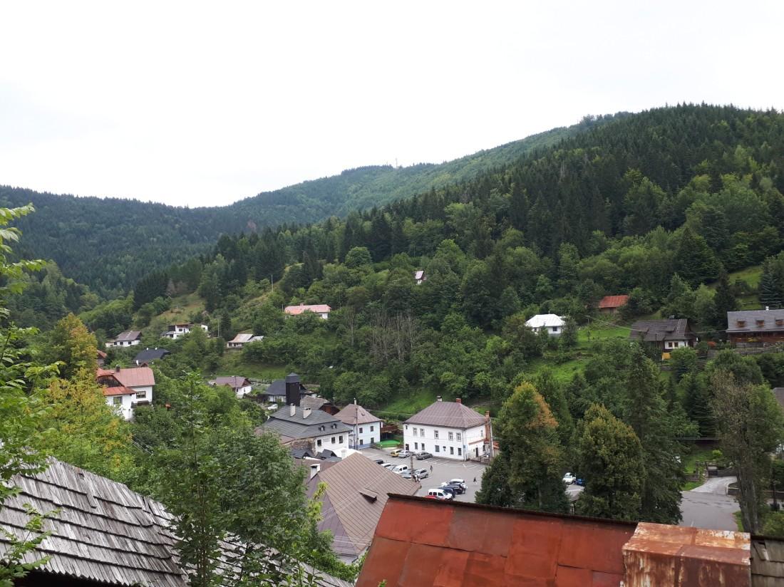 slovakia_forest